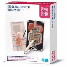Science Musuem SM Digestive System Buzz Wire